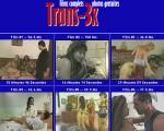 Trans 3x